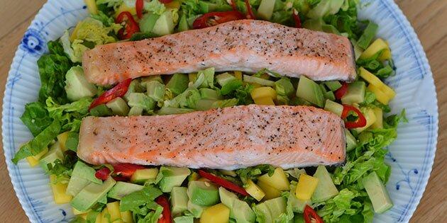 salat laks avocado